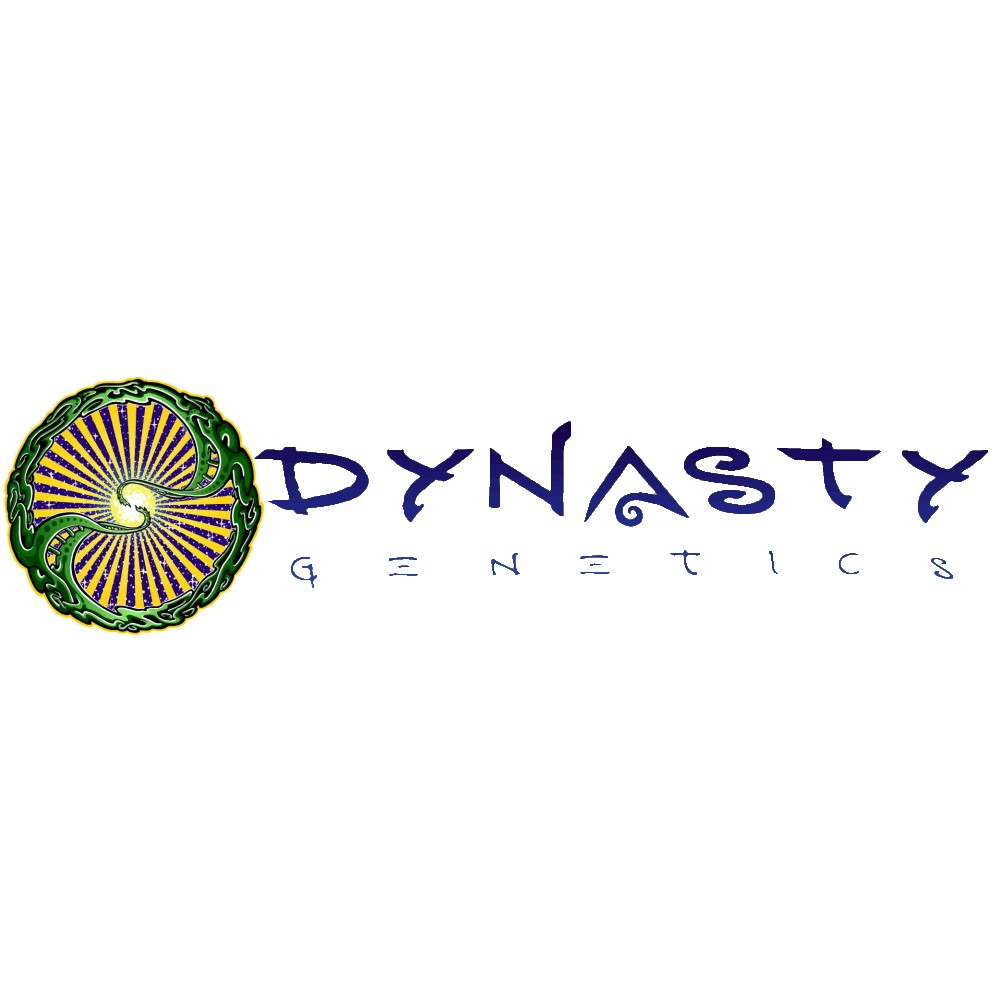 Dynasty Genetics Regular